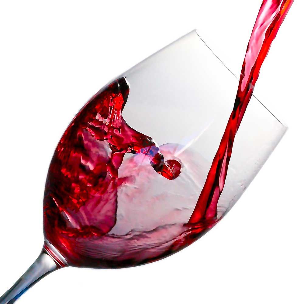 Weinberkostung bei Strubel Wein: österreichische Weine blind verkosten